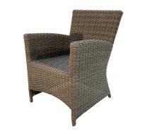 OURA Synthetic Rattan Dining Chair